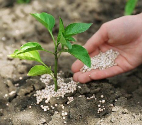 Mix Micronutrients Fertilizer